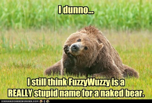 bears stupid name thinking - 7009370368