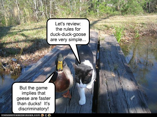 Let's review: the rules for duck-duck-goose are very simple... But the game implies that geese are faster than ducks! It's discriminatory!