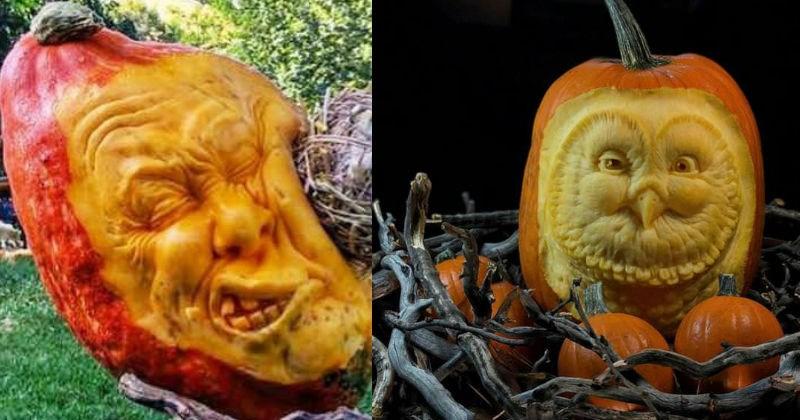 pumpkins halloween seasons ridiculous - 7010821