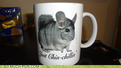 chilling,similar sounding,mug,suffix,chinchilla
