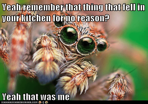 spiders watching you creepy fell - 7011378432