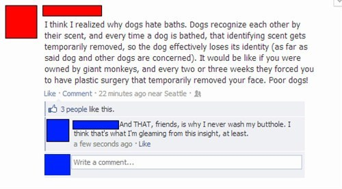 dogs,dog bath,pheromones
