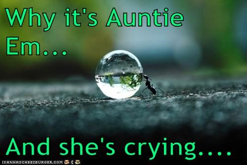 wizard of oz drop crystal ball ants crying - 7013402624