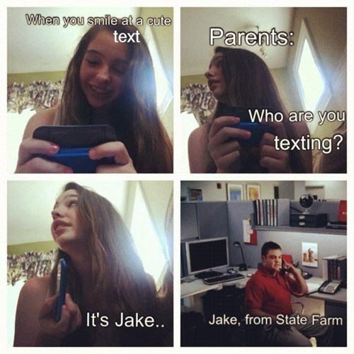 Jake,state farm,who is it