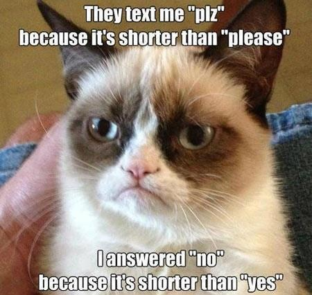 no Grumpy Cat yes g rated AutocoWrecks - 7014172928