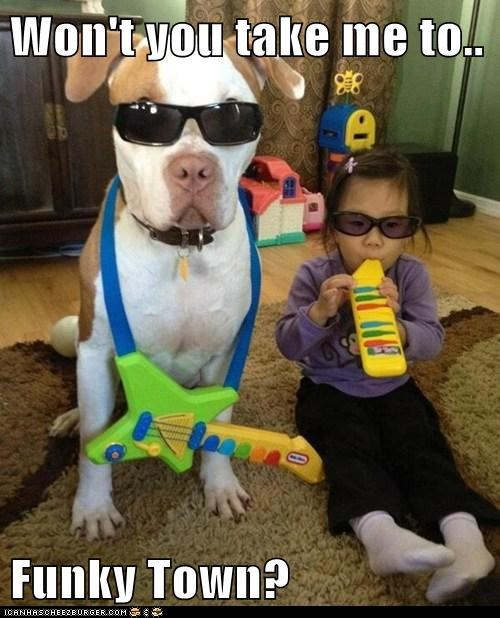 dogs,Music,pitbulls,disco,kids,funky town