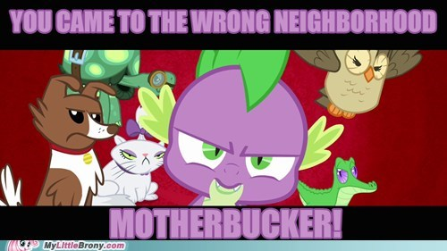 spike,pets,Memes,wrong neighborhood