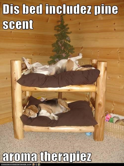 Dis bed includez pine scent  aroma therapiez
