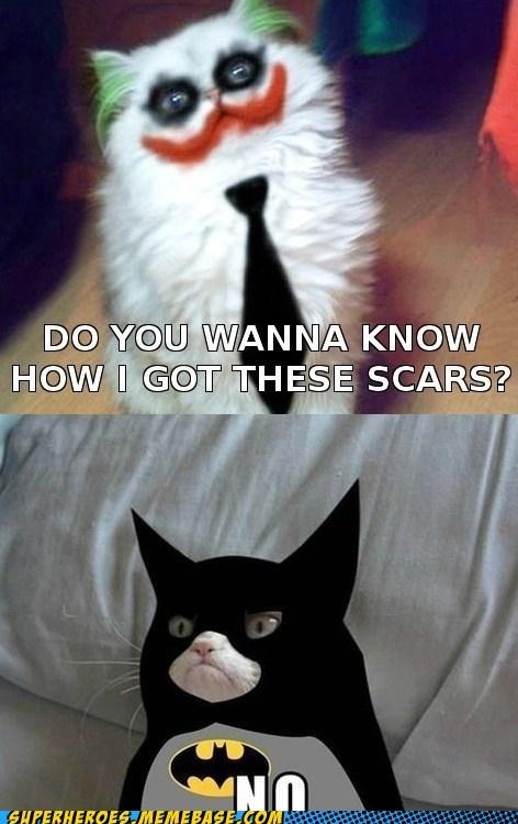 joker batman Grumpy Cat - 7014669568