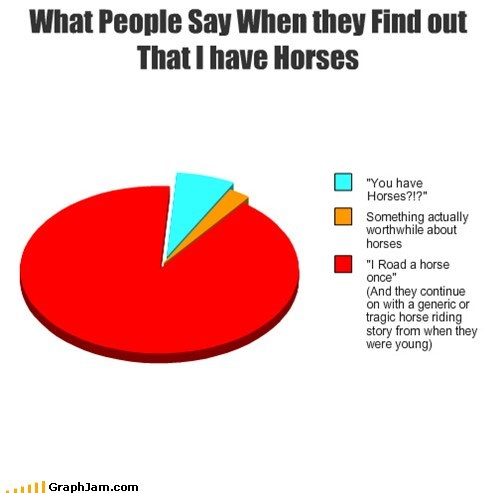 horses,how people react,Pie Chart