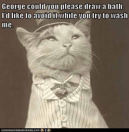 George could you please draw a bath. I'd like to avoid it while you try to wash me.