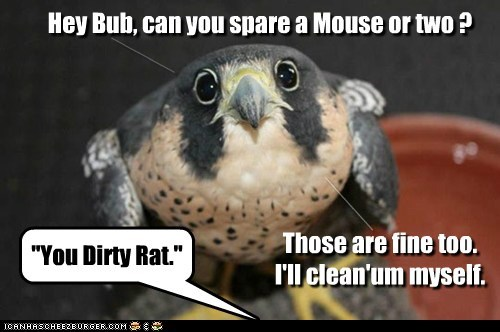 """Hey Bub, can you spare a Mouse or two ? """"You Dirty Rat."""" Those are fine too. I'll clean'um myself. _____ _____"""