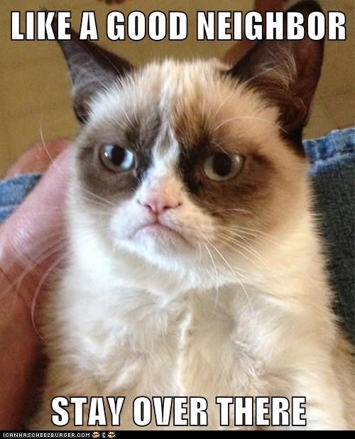 insurance jingle Grumpy Cat neighbor - 7016613376