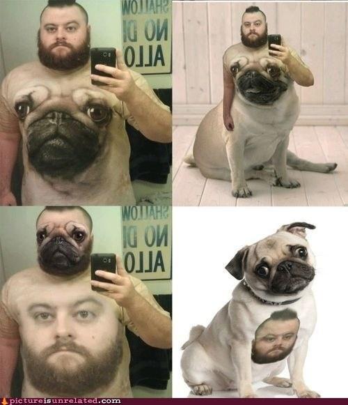 shopped pixels pug shirt classic - 7016788736
