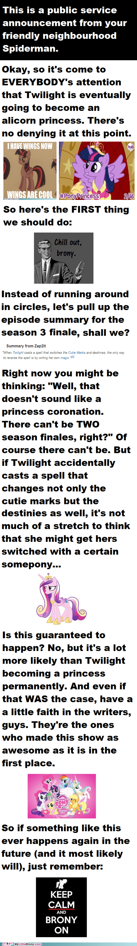 finale,psa,princess twilight,everything will be alright