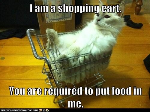 I am a shopping cart.  You are required to put food in me.