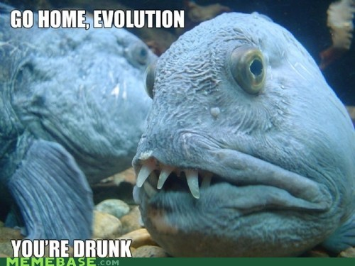 go home you're drunk evolution fish ugly - 7017018880