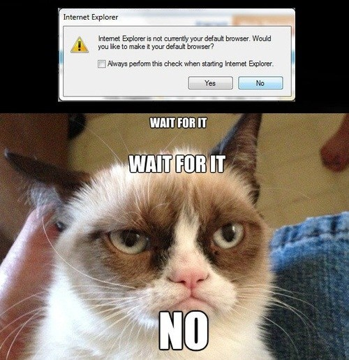 no,internet explorer,Grumpy Cat,monday thru friday,g-rated-default-browser