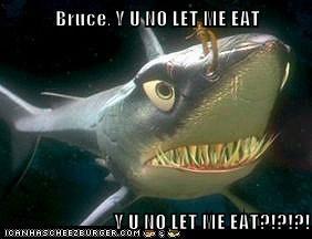 Bruce, Y U NO LET ME EAT  Y U NO LET ME EAT?!?!?!