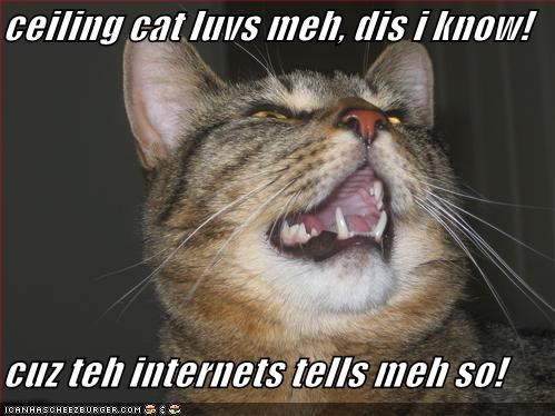 ceiling cat internet lolcats singing - 701895424