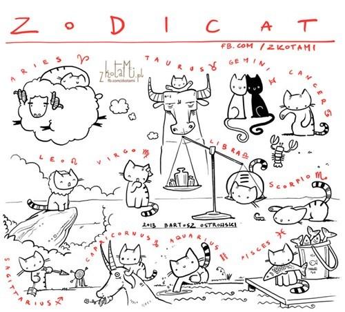 Cats astrology horoscope zodiac - 7019475712