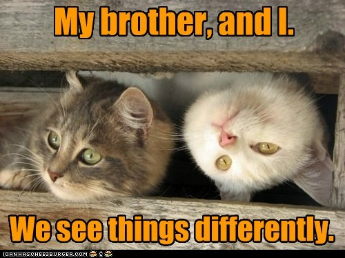 My brother, and I. We see things differently.