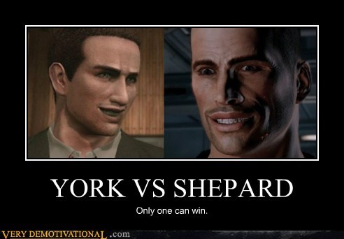 YORK VS SHEPARD Only one can win.
