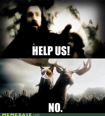 The Hobbit,thranduil,Grumpy Cat