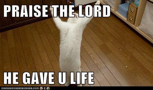 PRAISE THE LORD  HE GAVE U LIFE