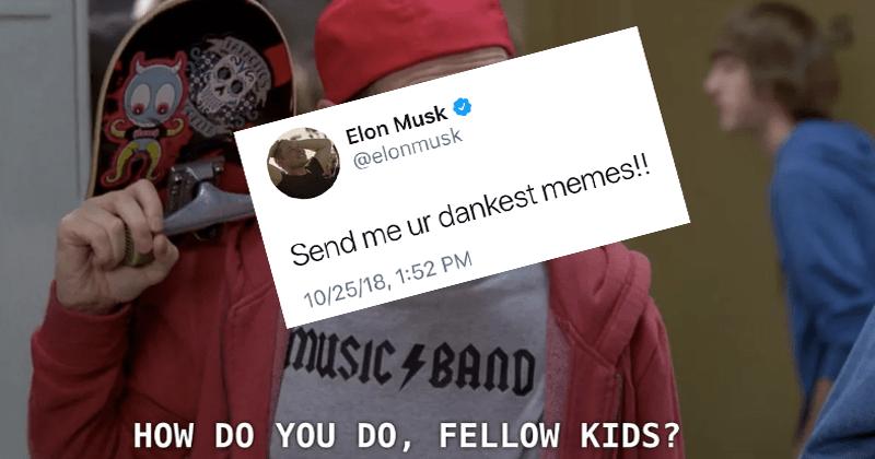 Funny tweet from Elon musk asking twitter for their dankest memes.d