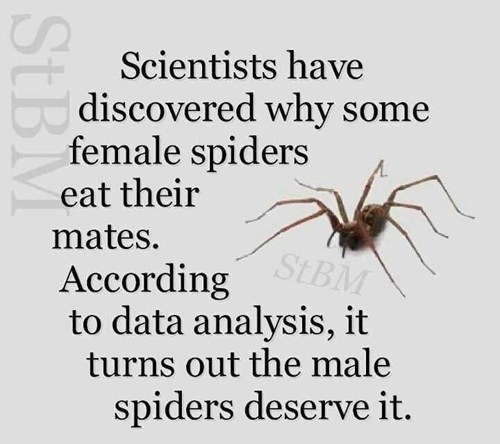spiders jerks biology School of FAIL