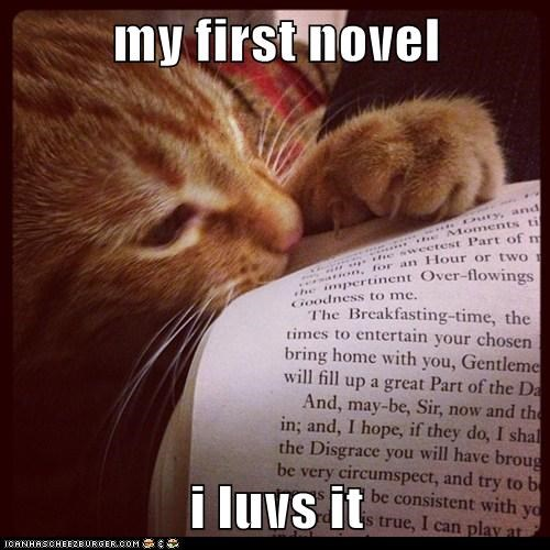 cat,novel,book,food,funny