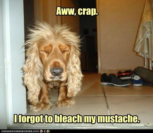 Aww, crap. I forgot to bleach my mustache.