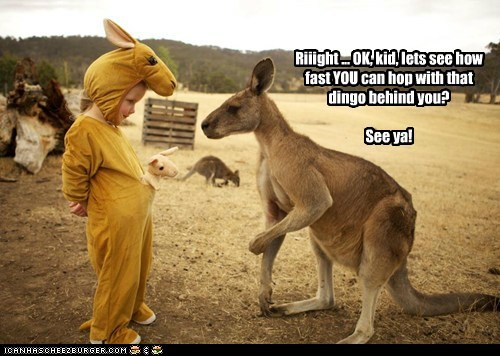 Riiight ... OK, kid, lets see how fast YOU can hop with that dingo behind you? See ya!