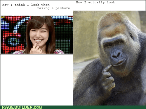 photogenic picture Photo gorilla - 7022630656