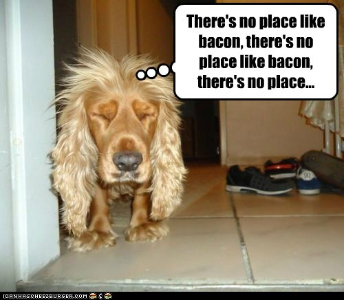 There's no place like bacon, there's no place like bacon, there's no place...