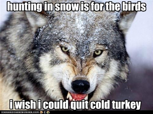 hunting in snow is for the birds i wish i could quit cold turkey