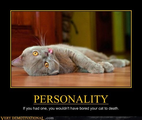 cat boring personality - 7022941440
