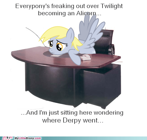 alicorn,derpy hooves,scared,Memes
