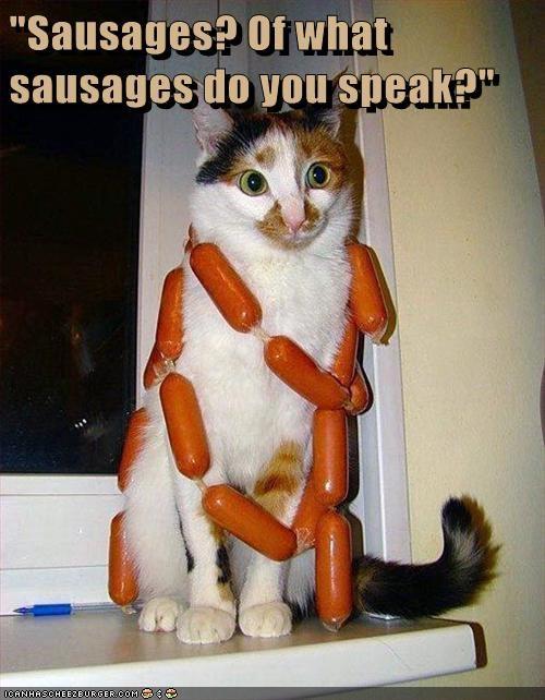 Cheezburger Image 7023357440