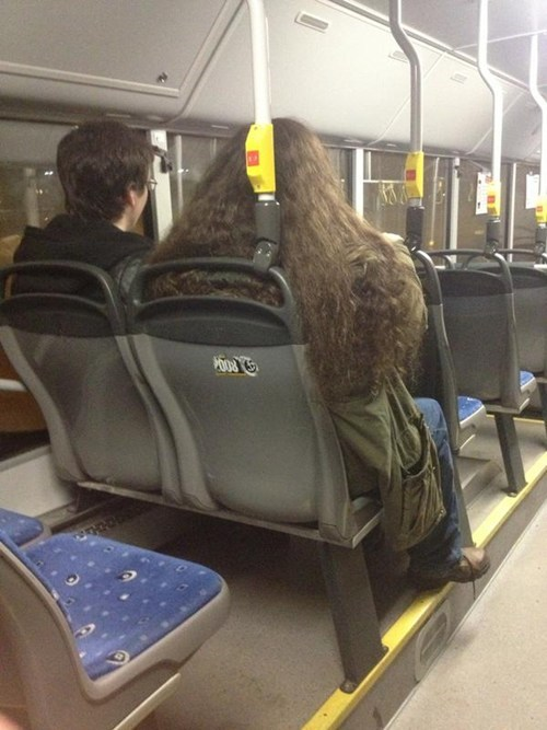 Harry Potter,nerdgasm,totally looks like,Hagrid,public transit,bus