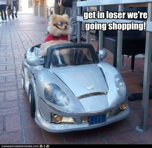get in loser we're going shopping!