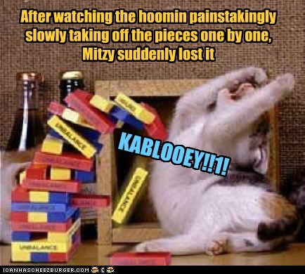After watching the hoomin painstakingly slowly taking off the pieces one by one, Mitzy suddenly lost it KABLOOEY!!1!