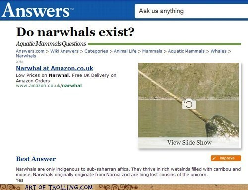 narwhals science biology - 7024783872