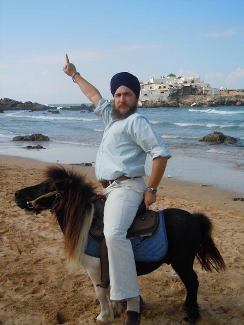 onward pony steed - 7026379008