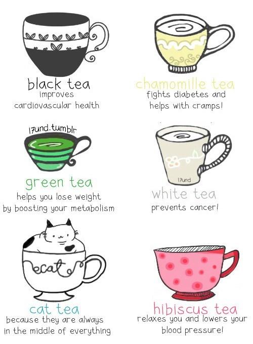 cat varieties tea non sequitur types - 7026746880