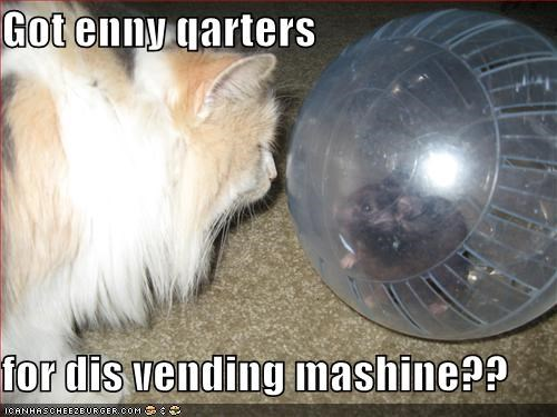 ball fud lolcats lolmice mouse nom nom nom quarters vending machine