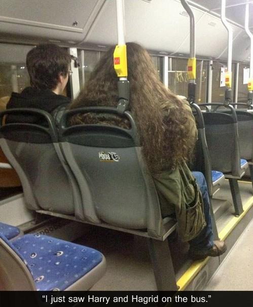 Harry Potter IRL public transportation bus - 7027029504