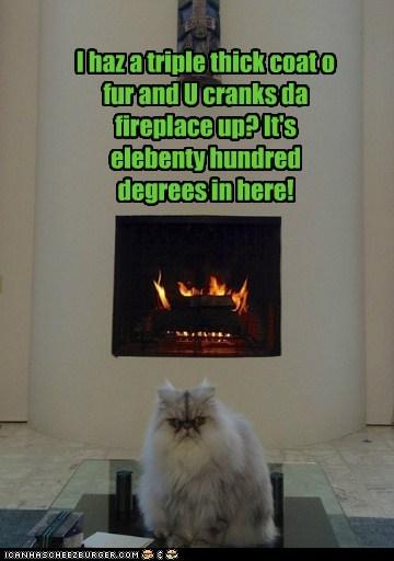 I haz a triple thick coat o fur and U cranks da fireplace up? It's elebenty hundred degrees in here!