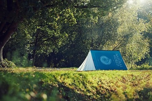 reading is sexy,design,tent,camping